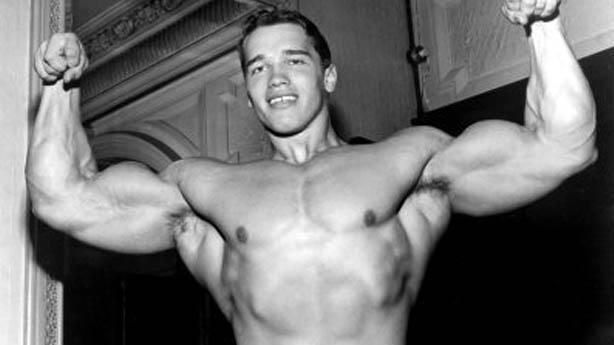 Arnold Schwarzenegger Gay